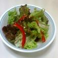 サニーレタスと赤パブリカのサラダ
