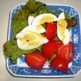 サニーレタス、ゆで卵、トマトのサラダ