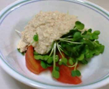 トマト・きゅうり・貝割れ大根のサラダ