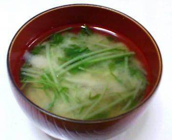 ゴボウと水菜の味噌汁