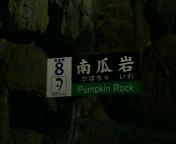 秋芳洞 No.13