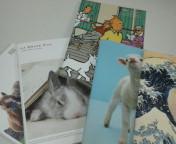 可愛いノート〜!