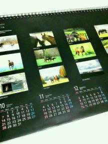 わあ、馬のカレンダー!